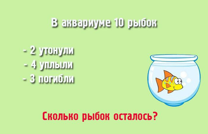 http://www.novate.ru/files/u34508/zada4a2.jpg