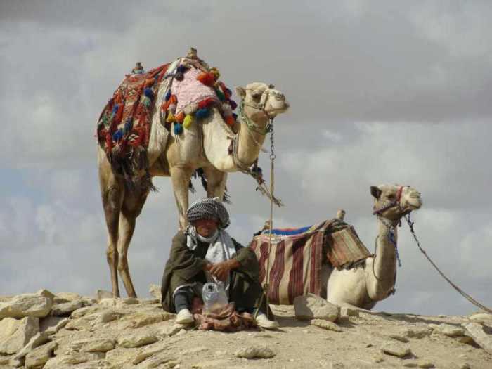 Паспорта для бедуинов как государственный бизнес.