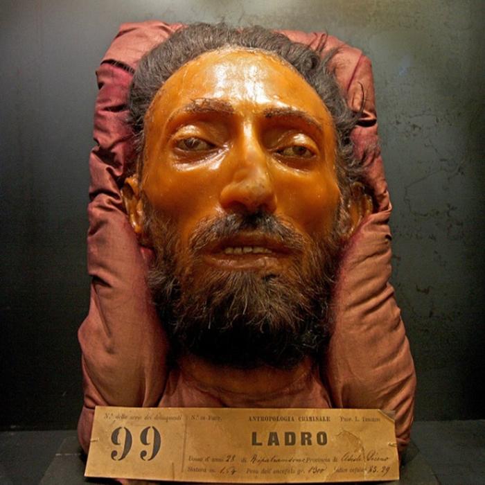 Музей криминальной антропологии имени Чезаре Ломброзо в Турине, Италия