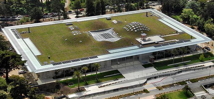 Крыша Калифорнийской Академии наук в Сан-Франциско с высоты птичьего полета