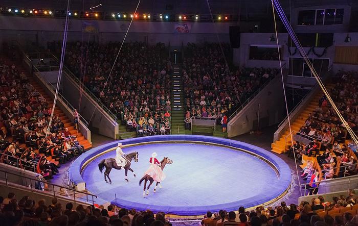 Нижегородский Цирк: под куполом