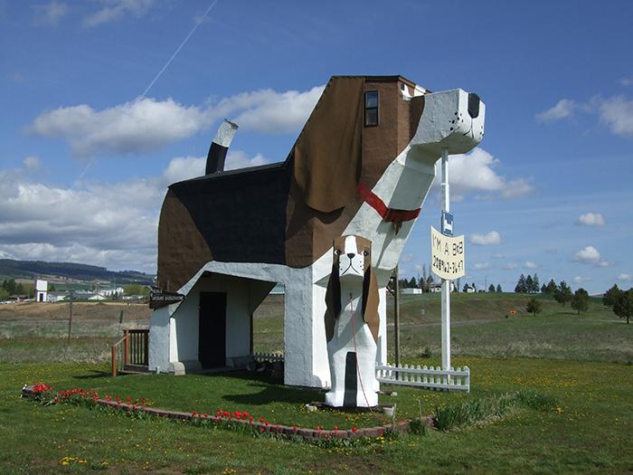 Отель в форме собаки в Коттонвуде, США