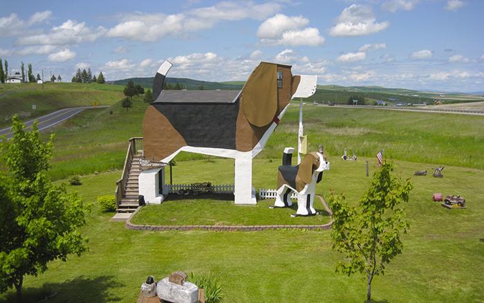 Отель-пансионат в форме собаки в Коттонвуде, США