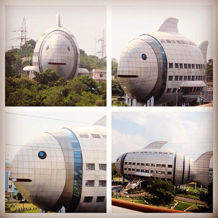 Здание Национального совета по развитию рыбного хозяйства в Хайдарабаде