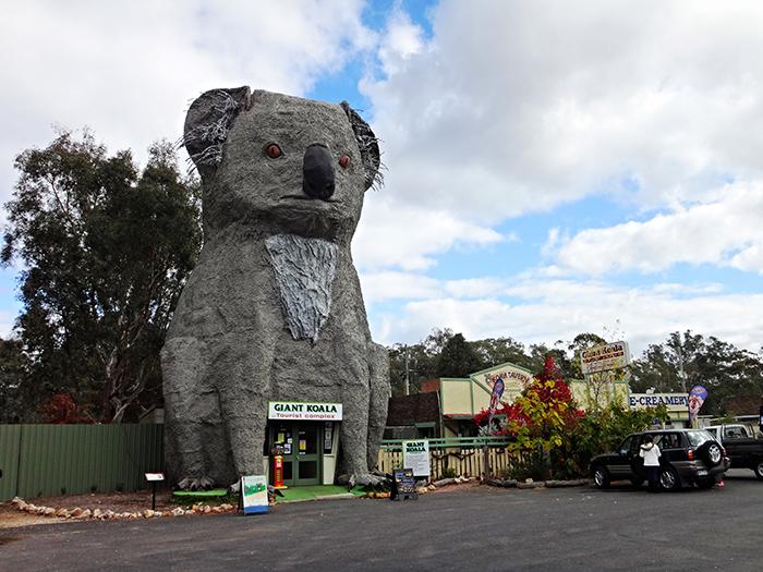 Туристический комплекс «Гигантская коала» в Додсвеллс Бридж, Австралия