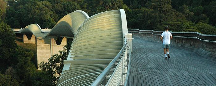 Мост 'Волны Хендерсона' в Сингапуре
