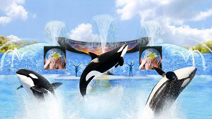 Парк развлечений и зоопарк-океанариум «Морской мир» в Орландо, США
