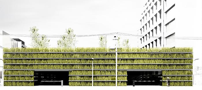 Сады Шинжику в Токио