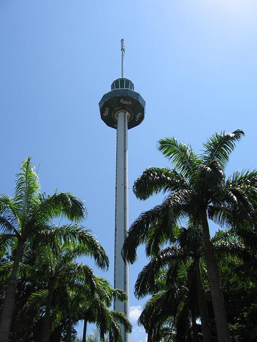 Обзорная башня «Тайгер Скай»