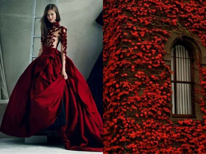 Потрясающие платья, созданные по эскизам природы, в проекте Fashion & Nature.