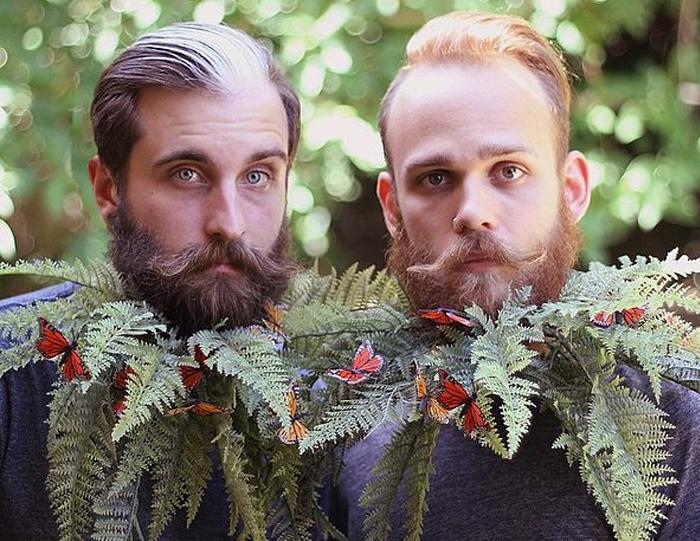 Живая борода из листьев папоротника, на которых сидят маленькие бабочки.