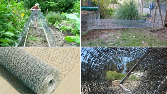 Из чего делается тоннель для выгула домашней птицы.