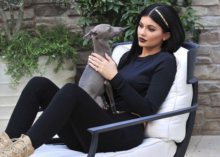 Известная американская модель Кайли Дженнер (Kylie Jenner) с флэш-тату на волосах.