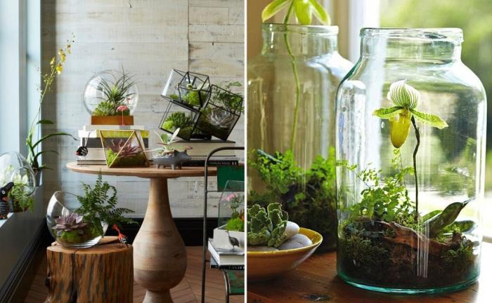 Как разбить небольшой сад не снаружи, а внутри дома или квартиры.