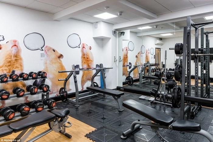 Спортивный зал для сотрудников «money.co.uk».
