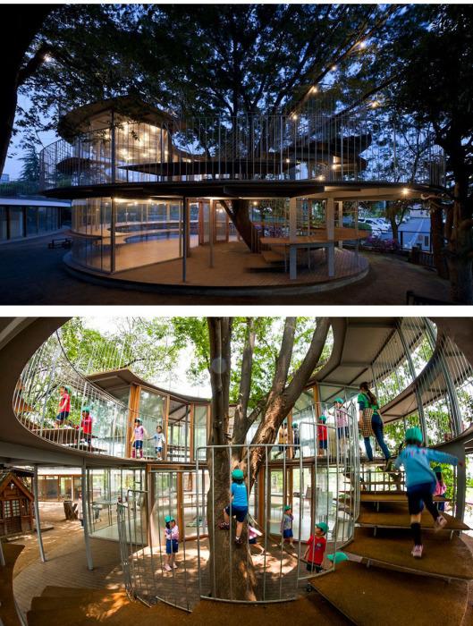 В Японии вокруг 50-летнего дерева построили маленький детский сад.
