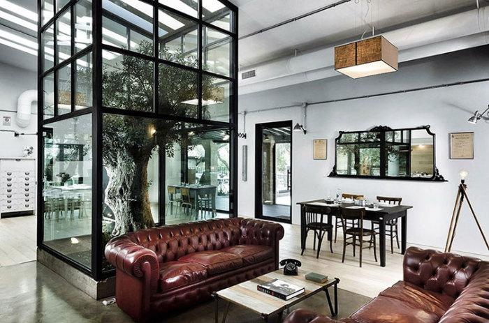 В Риме построили ресторан вокруг дерева, которое отгорожено от посетителей стеклом.