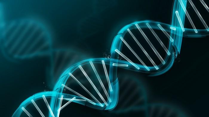 Проект Человеческий Геном