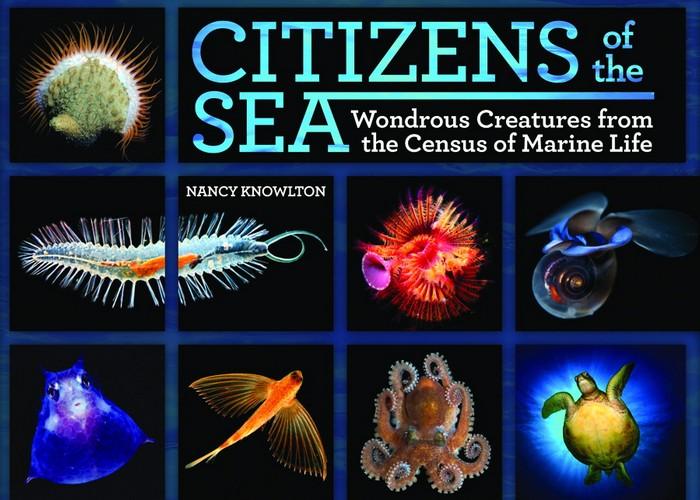 Перепись населения океана (Census of Marine Life)