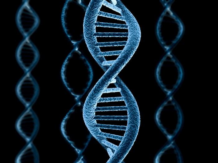 Хранение информации в моелкулах ДНК