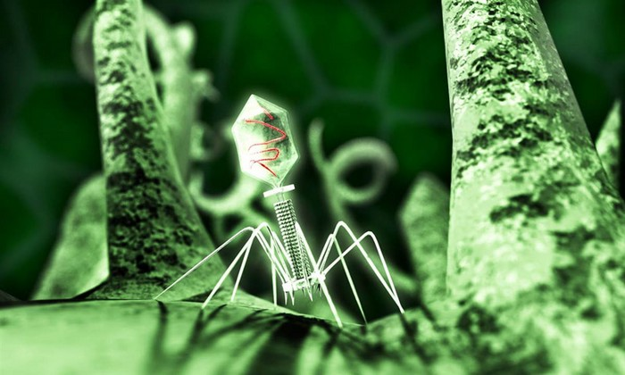 Нанороботы для доставки лекарств в организм человека