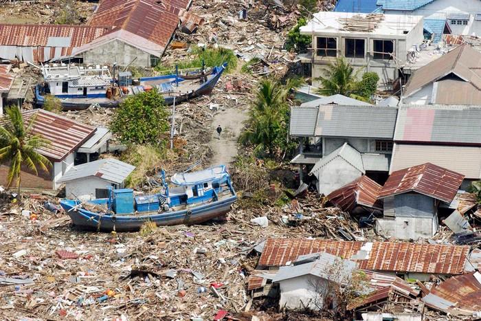 Цунами в Тихом океане в 2004 году