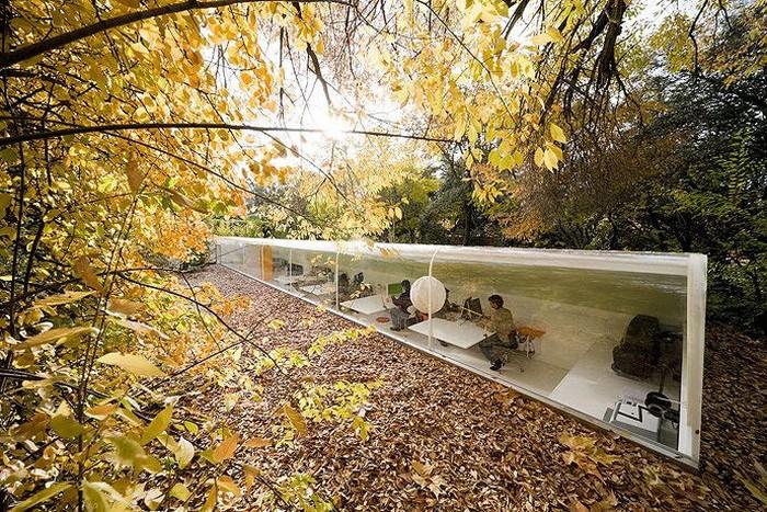 Офис архитектурной студии Selgan Cano, который расположен в лесу