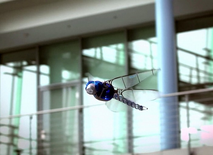 Летающий робот-стрекоза от компании Festo