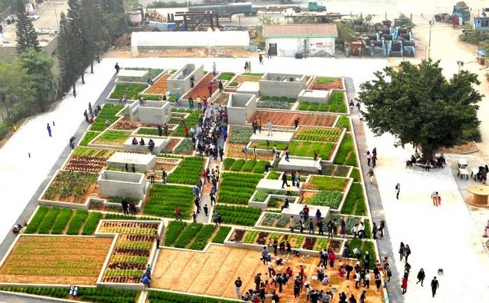 Value Farm – экспериментальная ферма на старом заводе в Китае