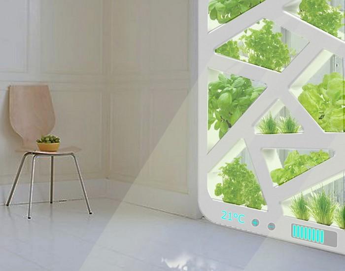 Окна-огороды Plant Window