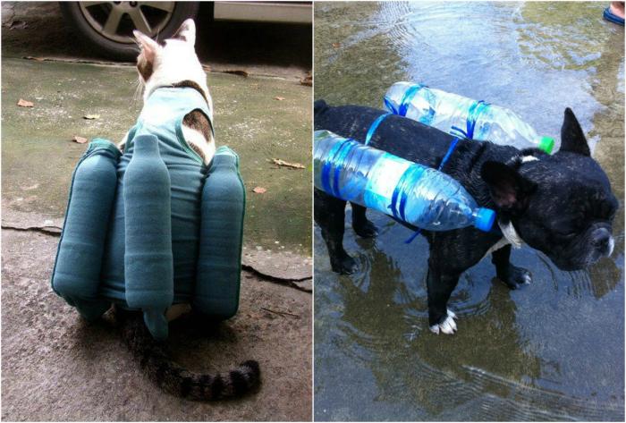Спасательные жилеты для домашних животных.