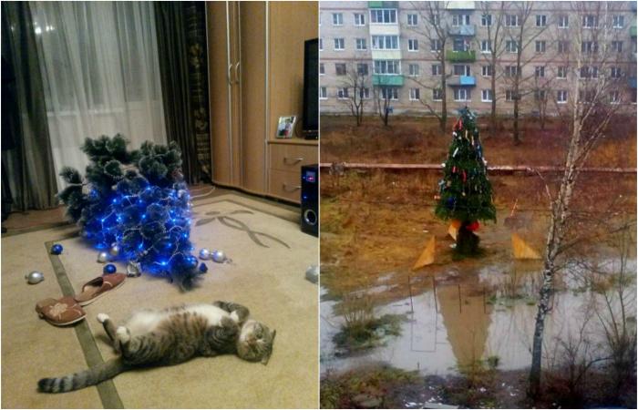 Забавные снимки, которые подарят новогоднее настроение.