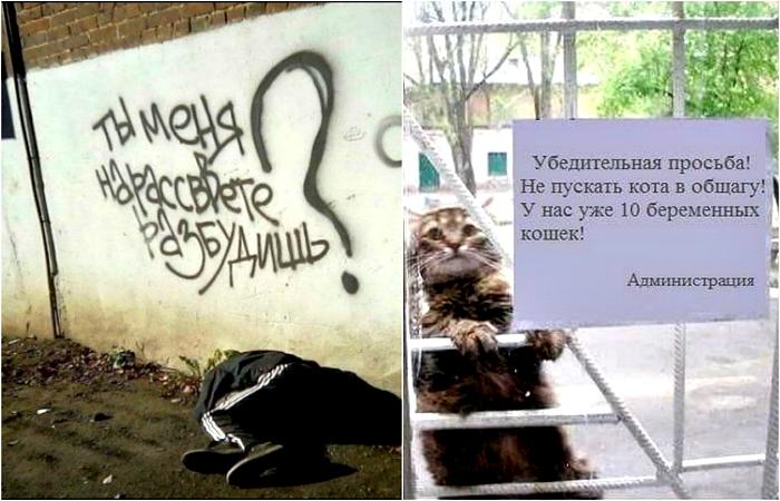 Уморительные надписи и объявления.