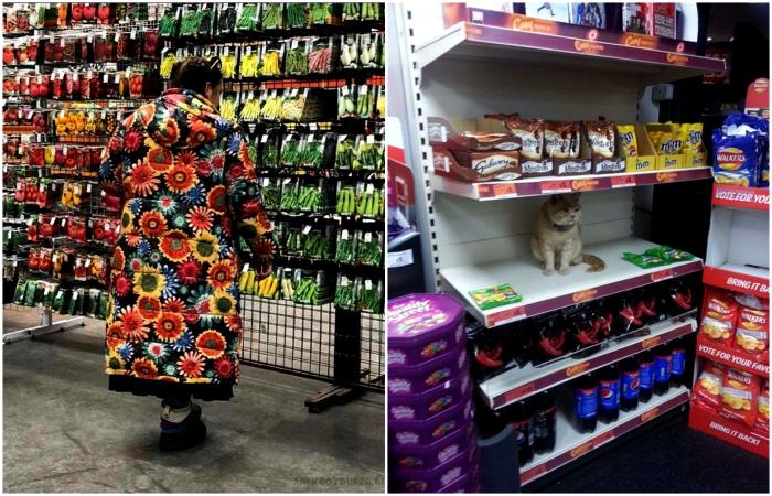 Забавные ситуации из магазинов.