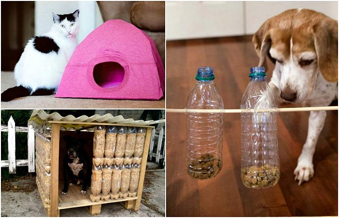 Классные поделки для домашних животных.