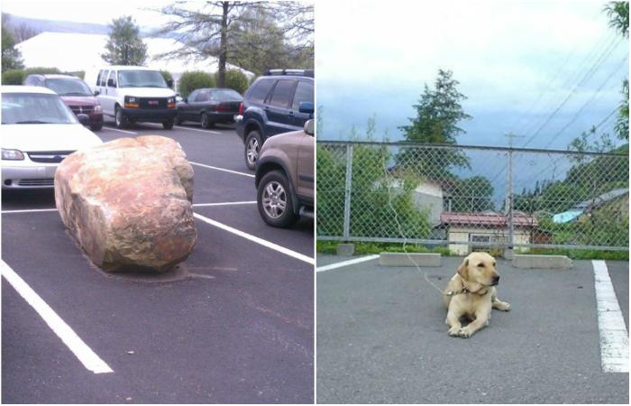 Забавные способы, которые помогут занять и сохранить место на парковке.