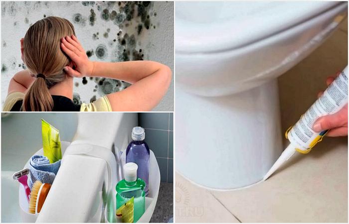Советы, которые помогут защитить санузел от грибка и плесени.