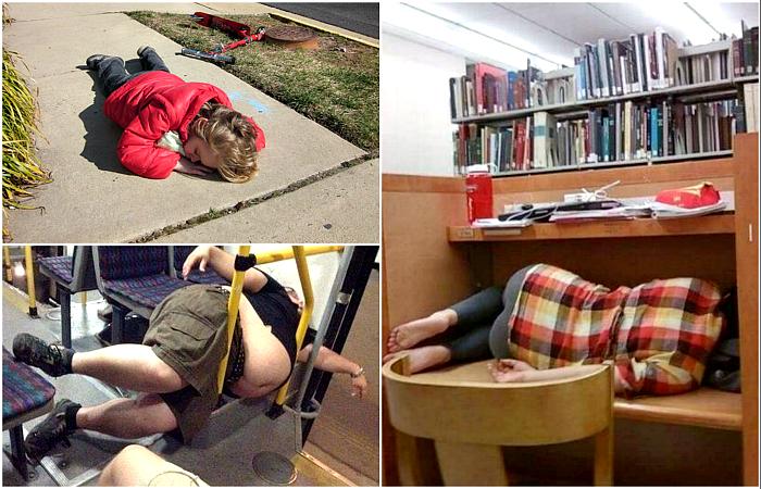 Потешные снимки, доказывающие, что спать можно где угодно.