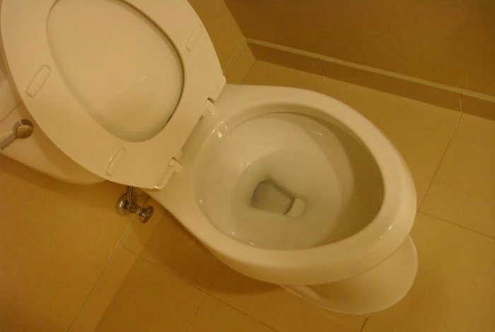 Особенности американской канализации. | Фото: ЯПлакалъ.