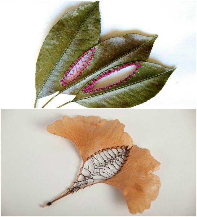 Листья деревьев, украшенные вышивкой.