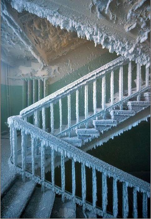 «Каждую зиму наш подъезд превращается в ледовый дворец!»