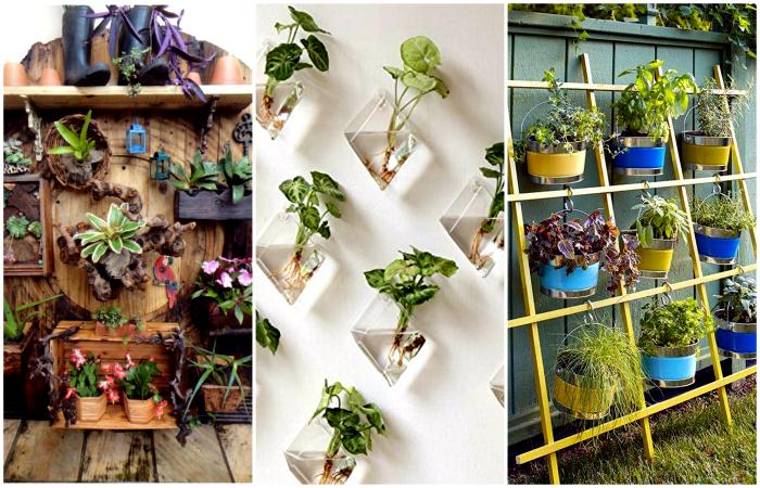 Чудесные идеи создания вертикального сада дома и на даче.
