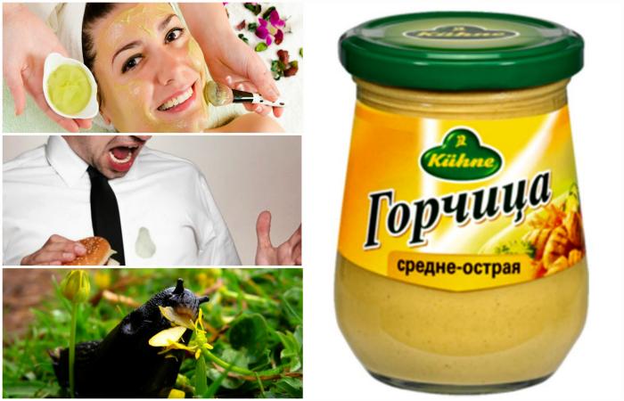 Полезные свойства горчицы и способы ее использования.