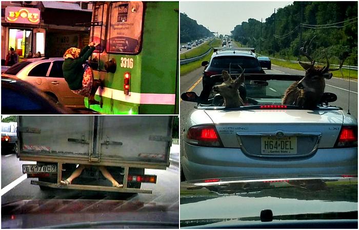 Курьезные ситуации на дороге, которые удивляют и заставляют смеяться.