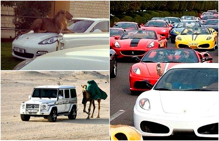 Комичные снимки, сделанные в Дубае.