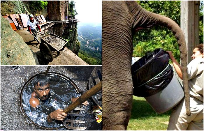 Снимки, которые отобьют охоту жаловаться на свою работу.