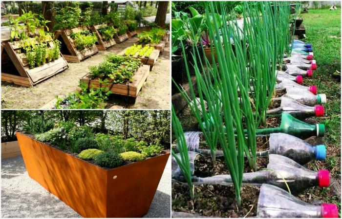 Примеры приподнятых грядок, которые помогут получить максимальный урожай в этом году.