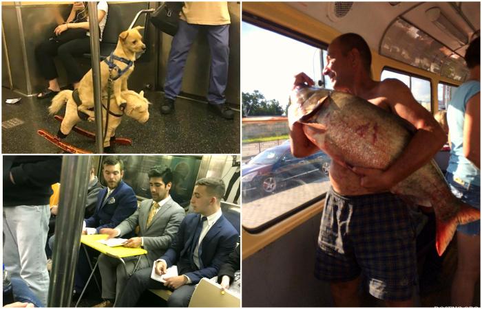 Поездки общественным транспортом - неповторимы!