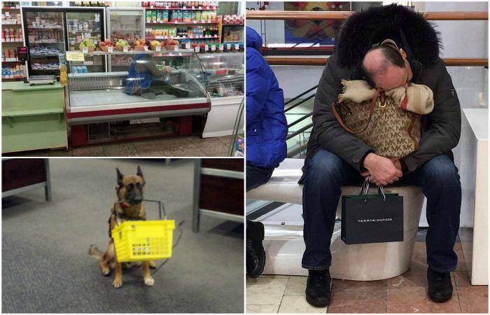 Забавные ситуации, произошедшие в магазинах.