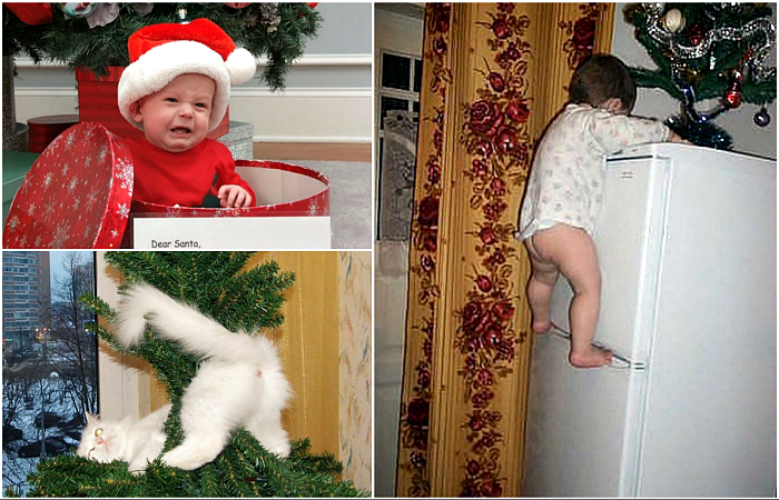 Забавные фотографии, доказывающие, что дети и животные ненавидят Новый год.